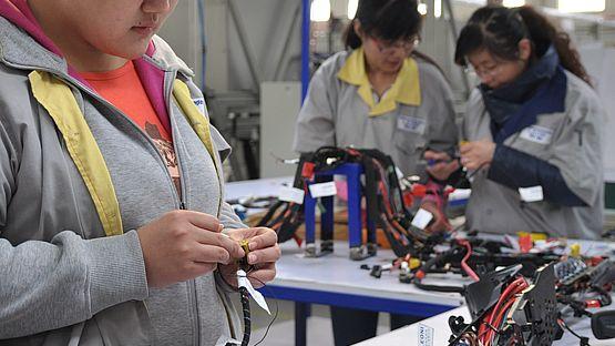 Langfang produces harnesses